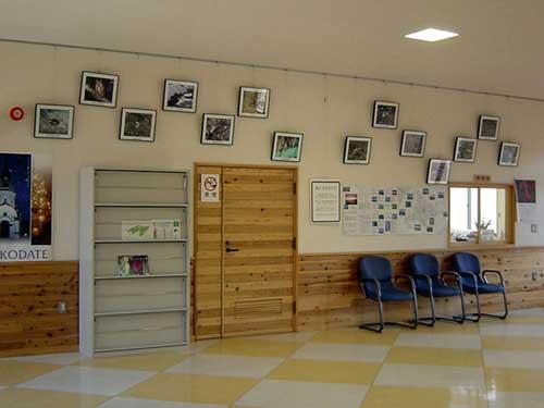 市民の森ビジターセンター室内